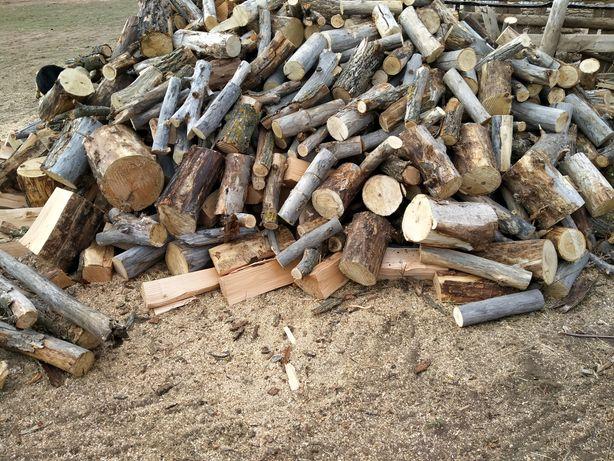 Продаю дрова, агаш сатам агаш турлери шегиршин,кызыл агаш, Торангы.