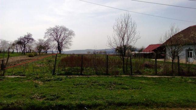 Vand teren intravilan pentru constructii in Cehu Silvaniei 5200 mp