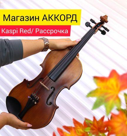 Скрипки в м-не Аккорд г.Павлодар Доставка бесплатно!