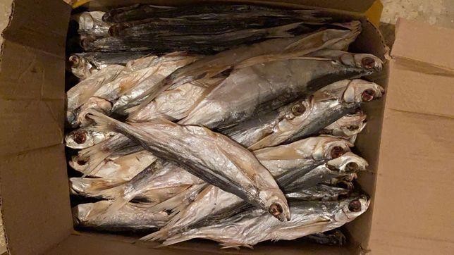 сушеная вяленая рыба