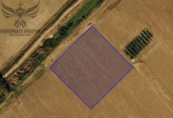 Продавам земя 7698 кв.м. - нива кв.Долни Воден общ.Асеновград