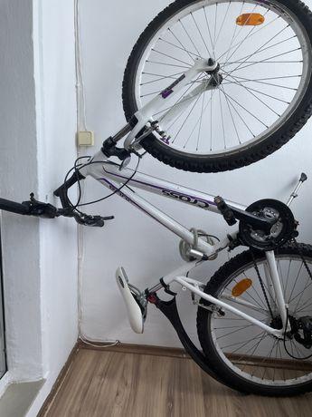 Bicicleta  Cross M3010