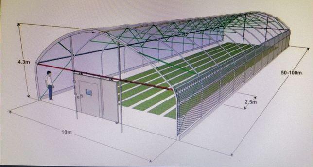 solar profesional legume