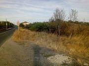 Лозе с овошки село Брястовец
