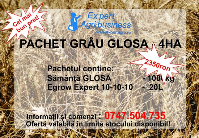 Pachet samanta grau GLOSA c1 4ha - Expert AGribusiness Fundulea