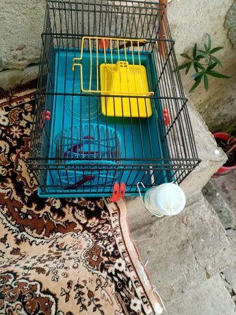 Cușcă hamster folosită puțin timp cu accesorii
