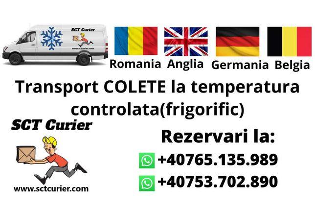 Transport Colete frigorific Anglia, Germania Belgia Luxemburg