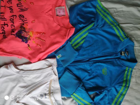 Adidas, Reebok, G star,Superdry, La tenera grazia, Alessa
