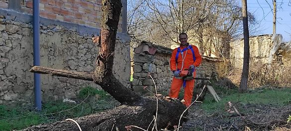 Горски дух - Поддръжка на дворове рязане на дървета