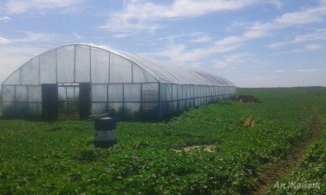 Земельный участок сельхоз назначения или под другой вид деятельности