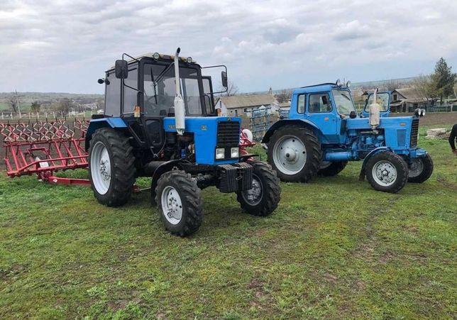 Продам трактора Мтз 82 Мтз 80 Мтз 892 Мтз 925 Мтз 1022 Мтз 1025 Мтз
