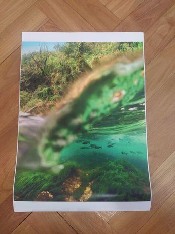 Фото картини 4бр морско дъно