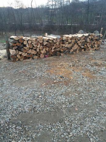 Vand lemn foc fag gorun salcam