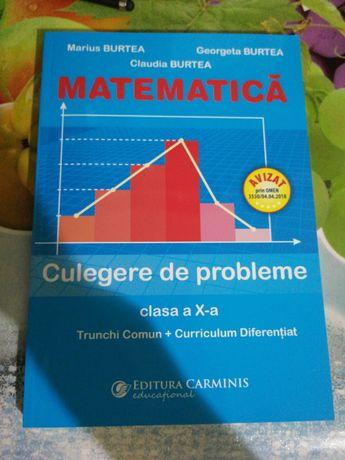 Culegere matematica clasa a X a
