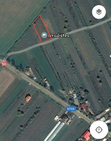 Vând teren Gradistea,1500mp, strada asfaltata