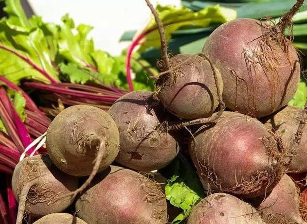 Продам свёклу морковь картофель