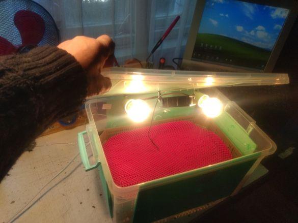 Инкубатор (български) 40 яйца промоция до 25.10.