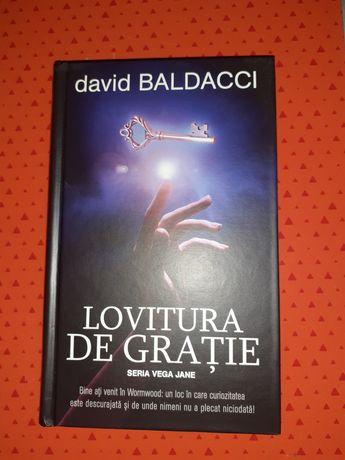 David Baldacci - Lovitura de gratie