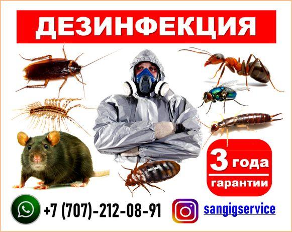 -Дезинфекция- Дезинсекция -Дератизация город Семей