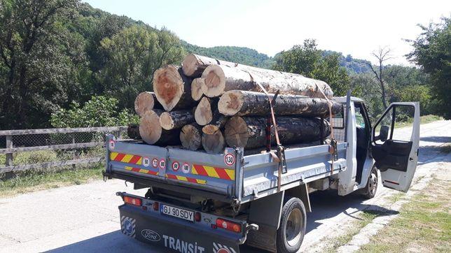 Vand lemne de foc fag sau stejar la pret avantajos