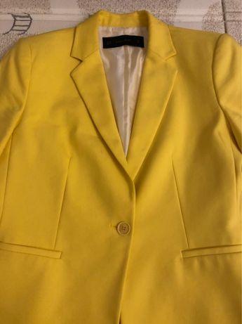 Одежда пиджак