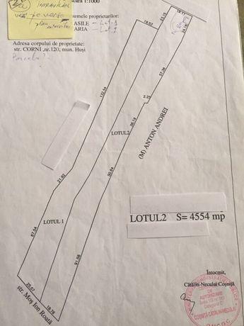 Zona Corni,4554mp