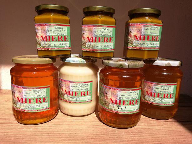 Vand miere si produse apicole naturale, pure, neprocesate chimic