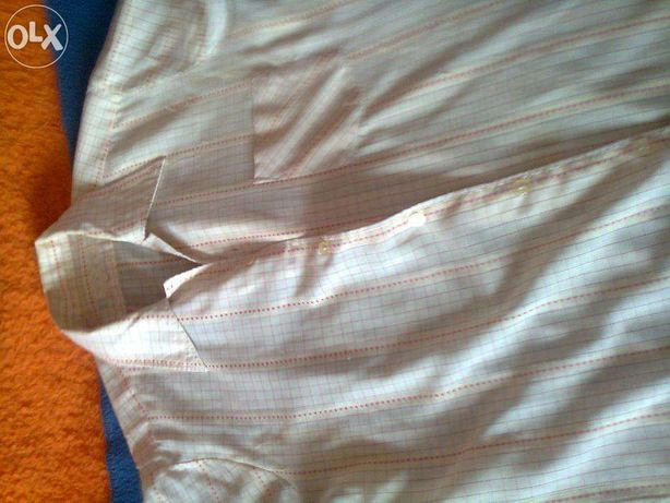 camasi barbatesc cu mineca scurta si lunga