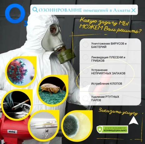 Озон в Алматы. Уничтожение клопов, насекомых