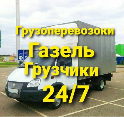 Газельи ДЕШЁВЫЕ hzyyg43