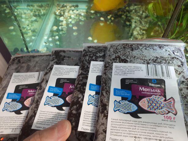 Свежемороженый мотыль для аквариумных рыб.