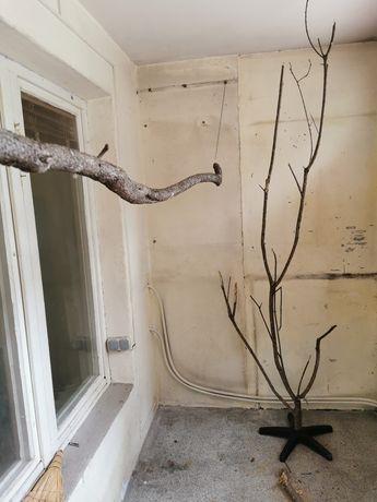 Дървени кацалки за птици