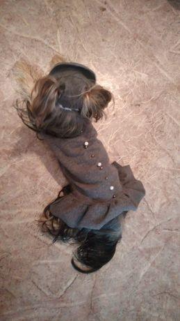 Пошив одежды для маленьких пород собак