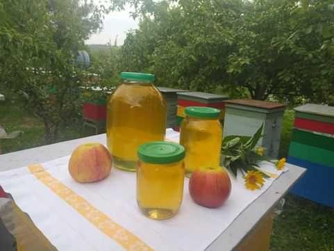 Разнотравный мед обеспечит свертываемость крови, 20% дешевле