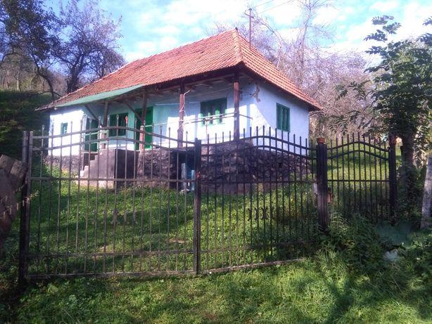 Casa/gospodarie la tara