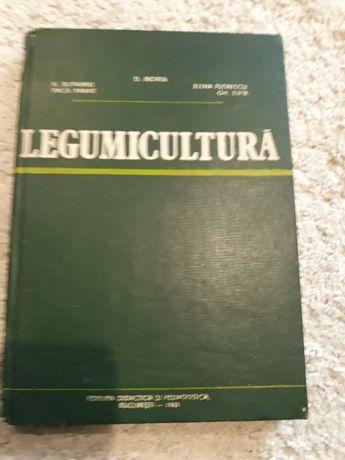 legumicultura 1983