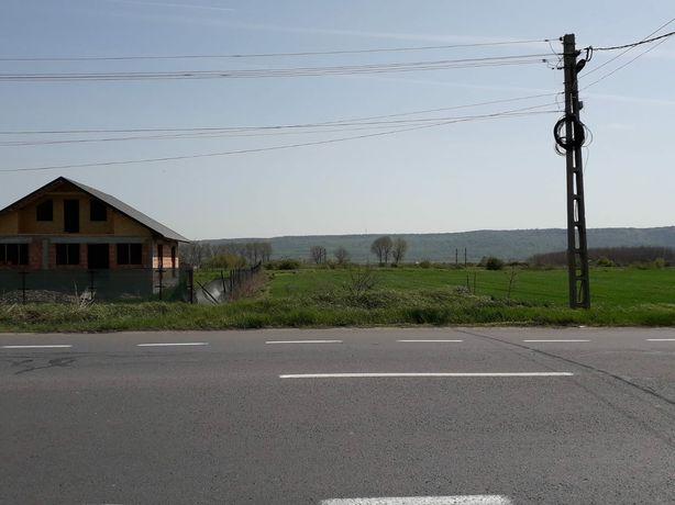 Vand teren Domnesti , Jud. Vrancea, 1 Ha .