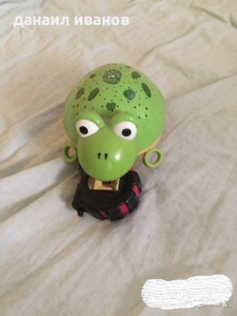соларна жабка