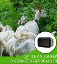 GPS за кози и овце - тракер /tracker/ с БЕЗПЛАТНО онлайн проследяване