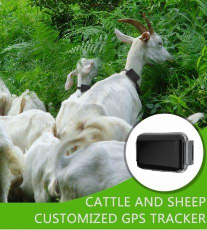 GPS за кози и овце - тракер / tracker с БЕЗПЛАТНО онлайн проследяване
