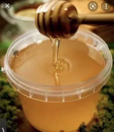 Жантакский мед.1