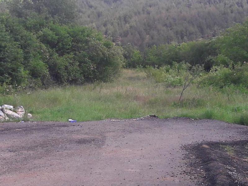Голям парцел в село Кътина с. Кътина - image 1