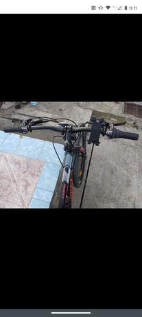 Bicicleta Carpatica