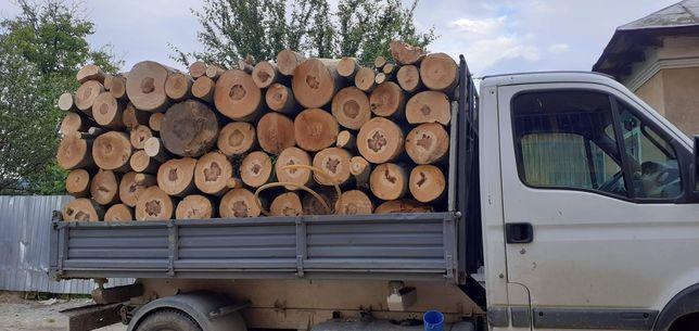Vand lemn foc fag