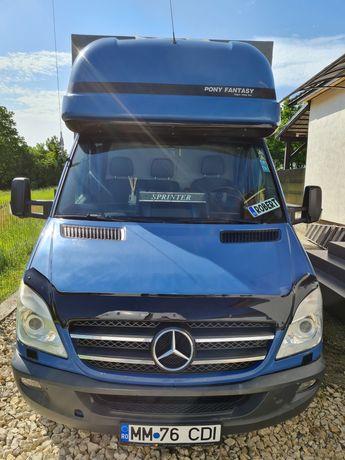 Mercedes sprinter 318 319