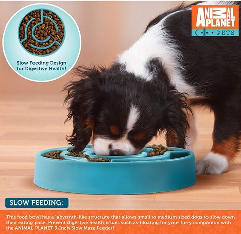 Animal Planet Купичка за лакомо куче бавно хранене лабиринт