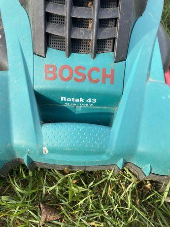 Masina Bosch pe curent