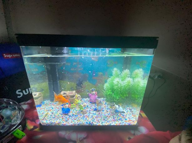 Продам аквариумный набор с рыбкой