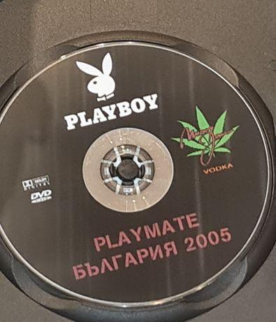 Playboy и Penthouse Pet DVD за възрастни
