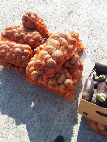 Vand cartofi pentru consum